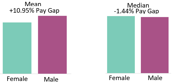 Gender pay gap 2