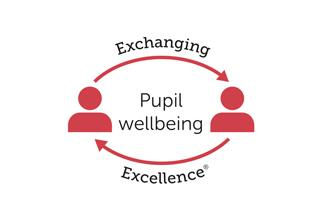 Pupil wellbeing