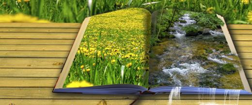 Open Book Fantasy Waterfall