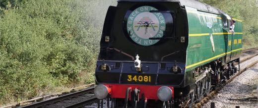 Train with Back on Track logo