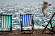 Deckchairs and seagul